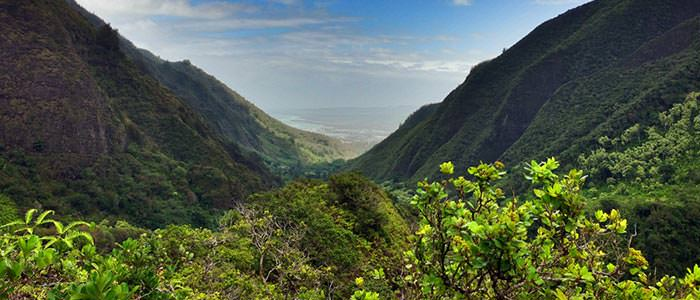 Learn about historic Iao Valley State Park.